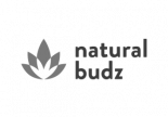 natural-budz-cannabis-canada-online-lab-lisbon-web-development-web-design