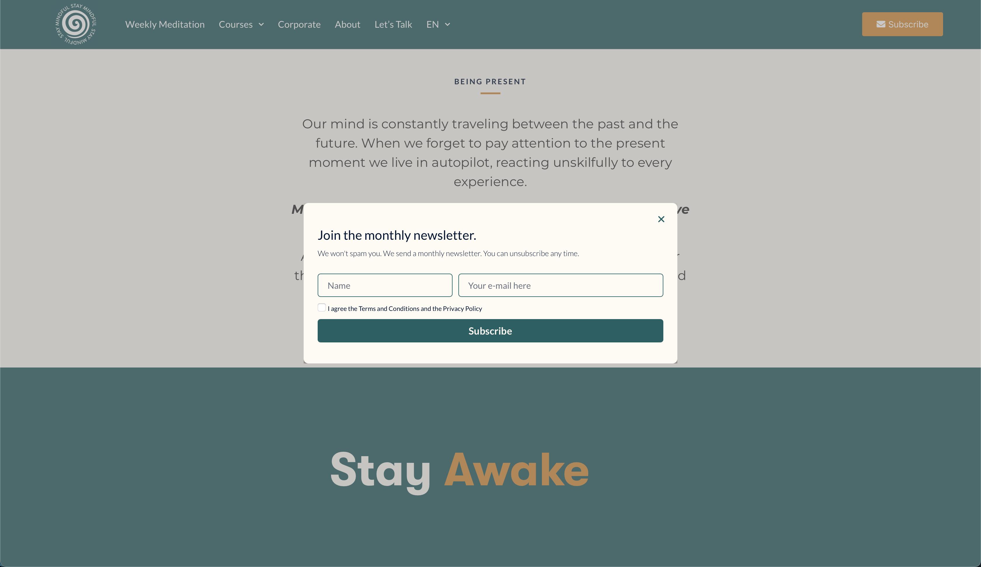 stay-mindful-online-lab-web-development-web-design-10